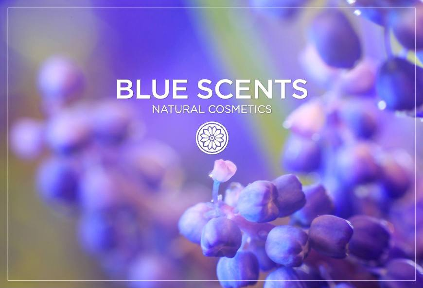 blue-scents